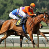 BEHOLDER and Gary Stevens win the Santa Lucia Stakes at Santa Anita 04.10.15. Photo by: Helen Solomon