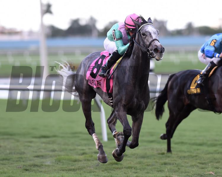 Tuttipaesi wins the 2015 South Beach Stakes.<br /> Coglianese Photos/Lauren King