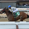Salutos Amigos wins the 2015 Tom Fool.<br /> Coglianese Photos/Joe Labozzetta
