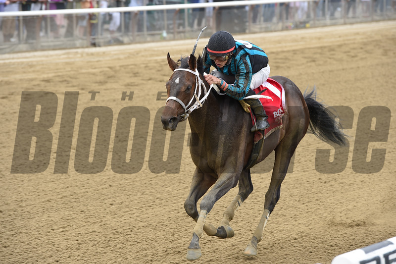 Cocked and Loaded wins the 2015 Tremont Stakes.<br /> Coglianese Photos
