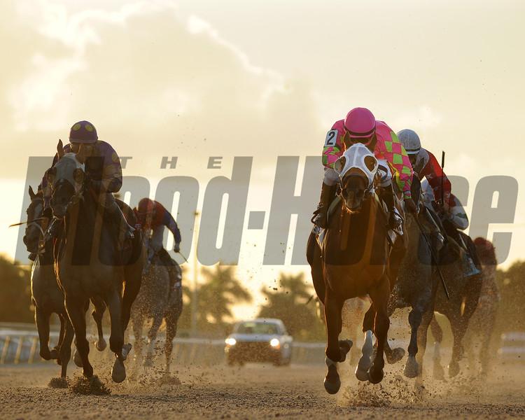 Li'l Meatball wins the 2015 Juvenile Sprint Stakes.<br /> Coglianese Photos