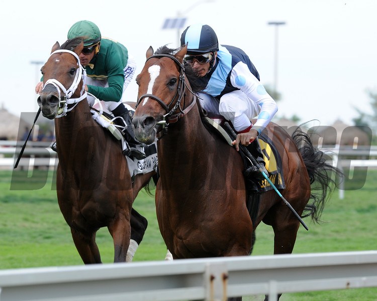 War Correspondent wins the 2015 Appleton Stakes.<br /> Coglianese Photos/Kenny Martin