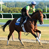 Biz The Nurse - Belmont Park, May 30, 2015.<br /> Coglianese Photos/Susie Raisher