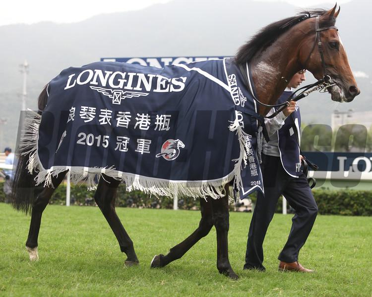 Highland Reel wins the 2015 Hong Kong Vase.<br /> Masakazu Takahashi
