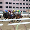 Far From Over wins the 2015 Withers Stakes at Aqueduct.<br /> Coglianese Photos/Joe Labozzetta