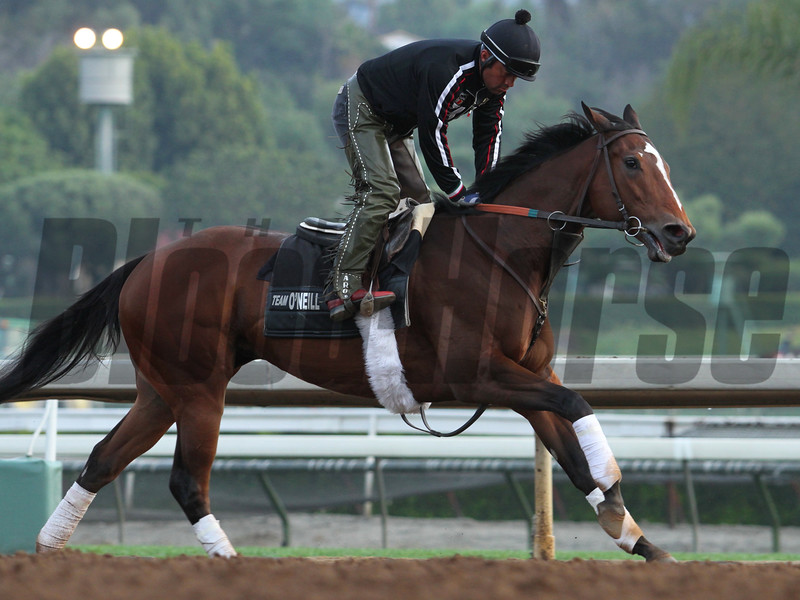 SMOOVE IT, bred and owned by J. Paul Reddam, at Santa Anita 04.10.15. Photo by: Helen Solomon