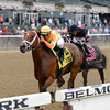 Dame Dorothy wins the 2015 Bed o' Roses.<br /> Coglianese Photos