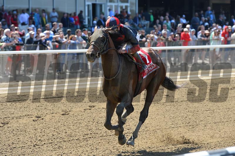 Tonalist wins the 2015 Westchester Stakes.<br /> Coglianese Photos/Joe Labozzetta