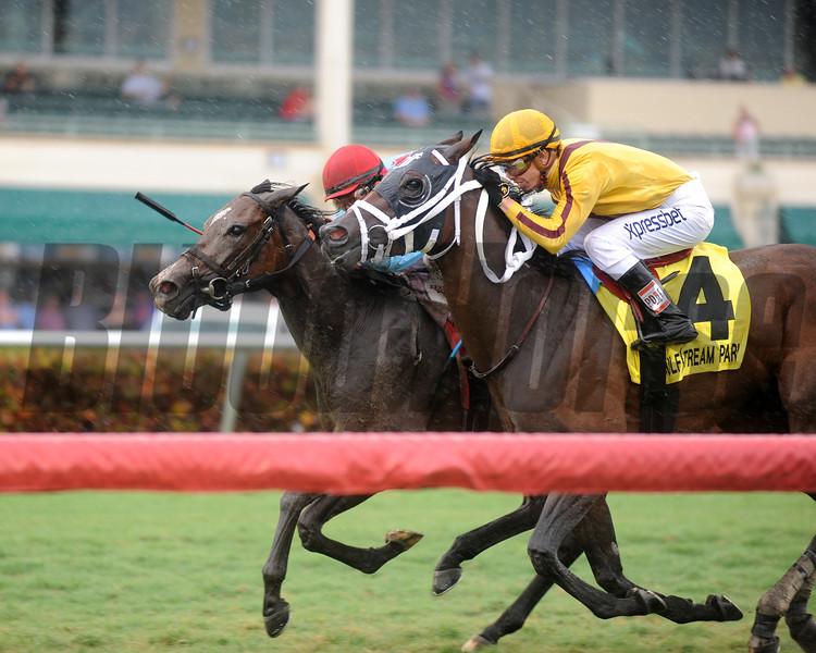 Josdesanimaux wins the 2015 Florida Sire Jewel Princess Stakes.<br /> Coglianese Photos/Kenny Martin