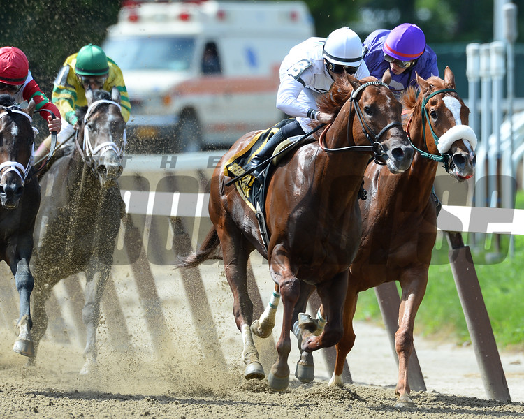 Speightster wins the 2015 Dwyer Stakes.<br /> Coglianese Photos/Joe Labozzetta