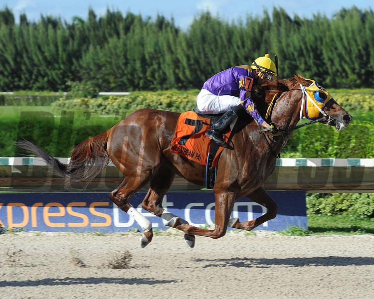 Saraguaro wins the 2015 Sunshine Millions Classic Preview.<br /> Coglianese Photos/Leslie Martin