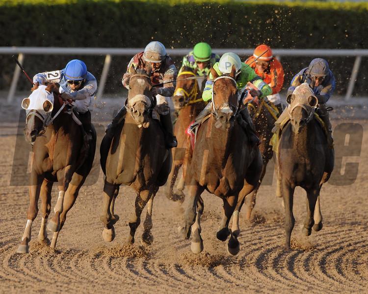 Sr. Quisqueyano wins the 2015 Florida Sunshine Millions Classic Stakes<br /> Coglianese Photo