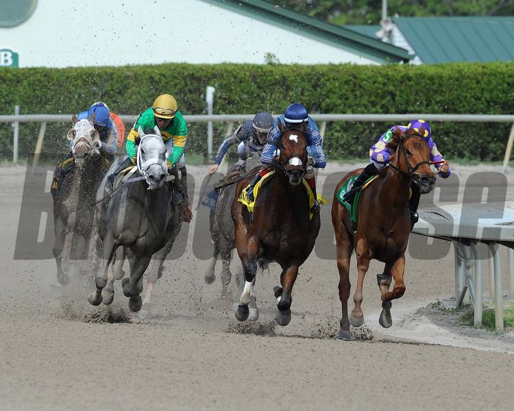 Best Behavior wins the Sugar Swirl Stakes Dec. 26, 2015<br /> Coglianese Photo/Arianna Spadoni