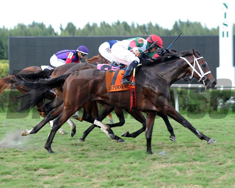 Little Nick V. wins the 2015 Juvenile Turf Stakes.<br /> Coglianese Photos/Leslie Martin