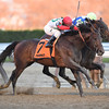 Connect wins the 2016 Cigar Mile<br /> Coglianese Photos