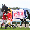 Vivlos wins the 2016 Shuka Sho<br /> Masakazu Takahashi Photo
