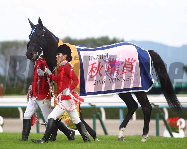 Vivlos wins the 2016 Shuka Sho<br /> Masakazu Takahashi Photo