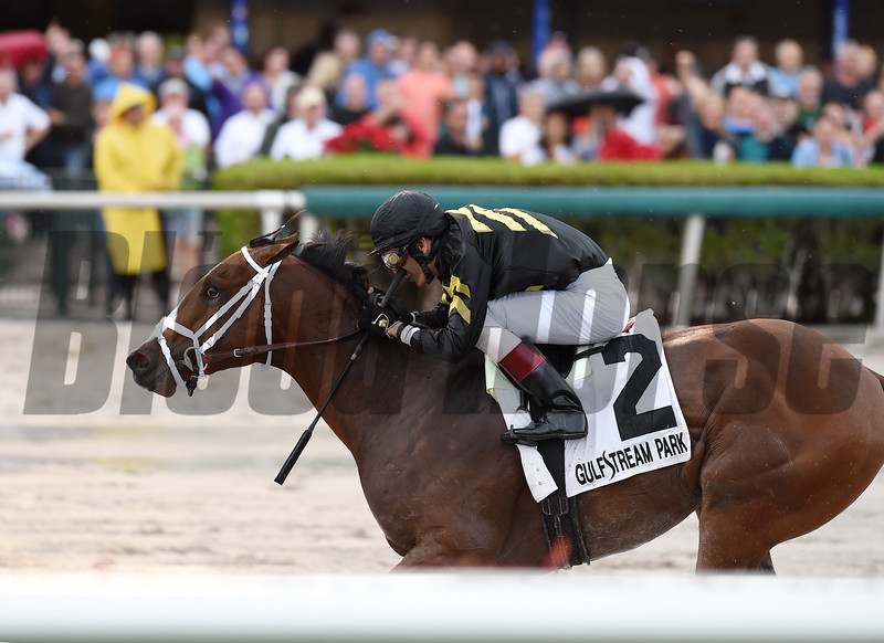 Sonic Mule wins the 2016 Buffalo Man Stakes<br /> Coglianese Photos/Andie Biancone