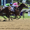 Haveyougoneaway wins the 2016 Ballerina<br /> Coglianese Photos