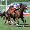 Eagle Spirit wins race 7 at Gulfstream Park June 26, 2016.<br /> Coglianese Photos/Lauren King