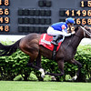 Tepin with Julien Leparoux wins the Churchill Distaff Turf Mile (gr. II)         <br /> Dave Harmon