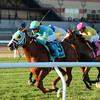 Bigger Picture wins the 2016 Red Smith<br /> Coglianese Photos/Joe Labozzetta