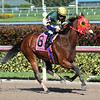 Defer Heaven wins the 2016 Claiming Crown Express.<br /> Coglianese Photos