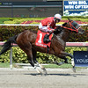 Yourdreamsormine the Bull Gator <br /> Coglianese Photos/Leslie Martin