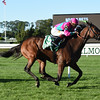 Mrs McDougal wins the 2016 Noble Damsel     <br /> Coglianese Photos/Susie Raisher