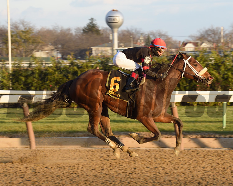 Paulassilverlining wins the 2016 Garland of Roses.<br /> Coglianese Photos/Chelsea Durand