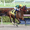 Shaft of Light wins the 2016 Claiming Crown Rapid Transit<br /> Coglianese Photos