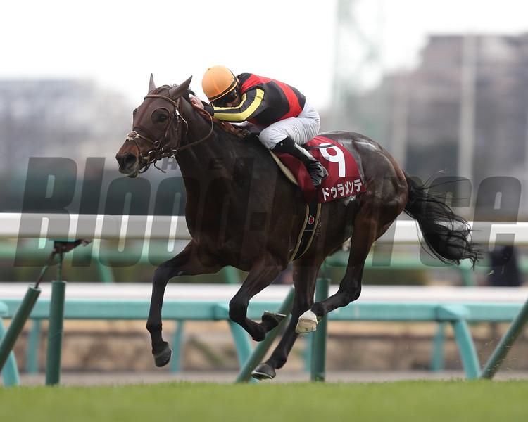 Duramente comes home strong to win the Nakayama Kinen at Nakayama Racecourse in Japan. <br /> Photo by: Masakazu Takahashi