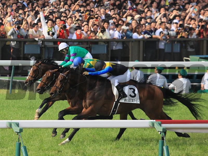 Makahiki (JPN) wins the Tokyo Yushun (Japanese Derby) May 29, 2016.<br /> Naoji Inada Photo
