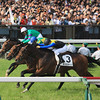 Makahiki (JPN) wins the Tokyo Yushun (Japanese Derby) May 29, 2016.<br /> Naoji Inada Photo