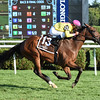 Fourstar Crook wins the 2016 Yaddo Stakes.<br /> Coglianese Photos