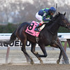 Mo Town wins the 2016 Remsen Stakes<br /> Coglianese Photos