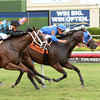 Doctor J Dub wins the 2016 Bob Umphrey Turf Sprint Stakes.<br /> Coglianese Photos/Leslie Martin
