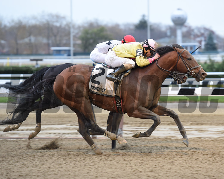 Heaven's Runway wins the 2016 Fall Highweight Handicap<br /> Coglianese Photos/Susie Raisher