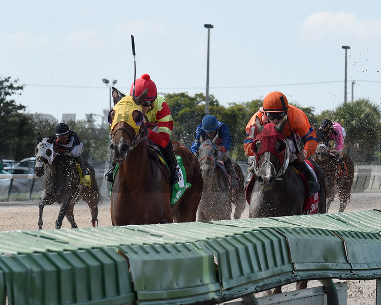 Moment of Delight wins the 2016 Millions Distaff Preview Stakes<br /> Coglianese Photos/Lauren King