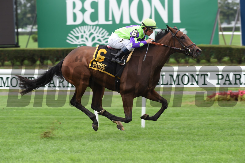New Money Honey wins the 2016 Miss Grillo Stakes<br /> Coglianese Photos