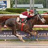 Tapwrit wins the 2016 Pulpit Stakes<br /> Coglianese Photos/Leslie Martin