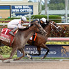Spelling Again wins the 2016 Princess Rooney Stakes.     <br /> Coglianese Photos/Leslie Martin