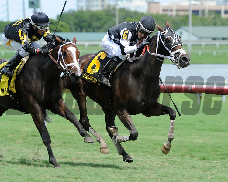 Whiskey Train wins the 2016 Armed Forces Stakes<br /> Coglianese Photos/Lauren King