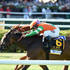 Guapaza wins the 2016  Fasig-Tipton Waya Stakes.<br /> Coglianese Photos/Adam Mooshian