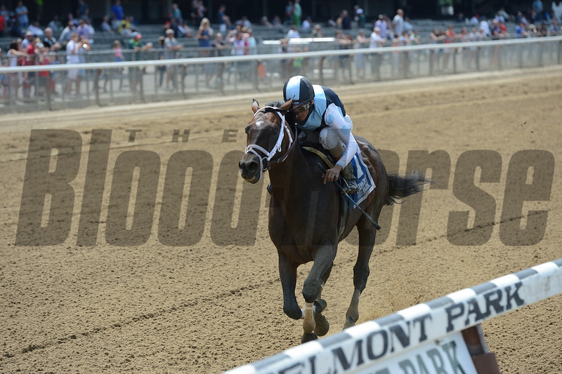 Comfort wins the State Dinner Stakes at Belmont Park July 4, 2016.<br /> Coglianese Photos/Chelsea Durand