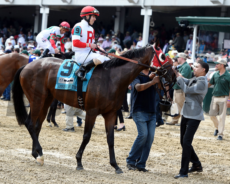 Camelot Kitten (#9) with Irad Ortiz wins the 25th Running of The American Turf (GII) at Churchill Downs on May 7, 2016.<br /> Dave Harmon Photo