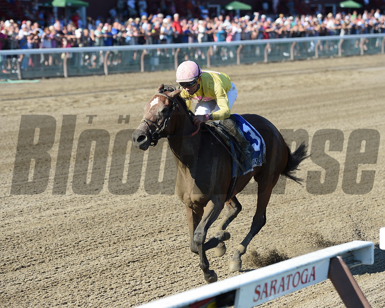 Wavell Avenue wins the 2016 Shine Again Stakes.<br /> Coglianese Photos/Chelsea Durand