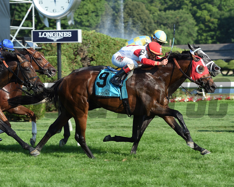 Camelot Kitten wins the 2016 National Museum of Racing Hall of Fame Stakes.<br /> Coglianese Photos