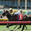 Diamond Bachelor wins the 2016 The Vid Stakes.<br /> Coglianese Photos/Kenny Martin