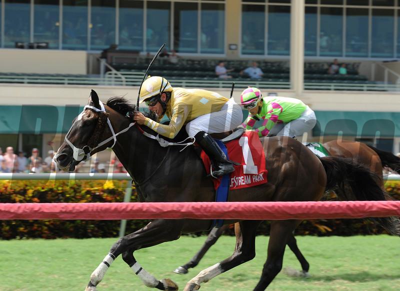 Diamond Bachelor wins the 2016 The Vid Stakes.<br /> Coglianese Photos/Kenny Martin